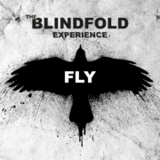 Fly, single by The Blindfold Experience