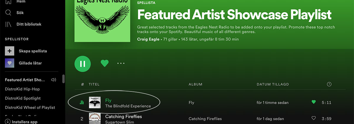 Fly on Eagle Nest Radios Playlist